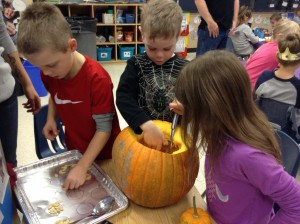 Having fun counting the seeds in the big pumpkin.
